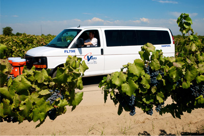 CalVans vehicle drives through grape vines