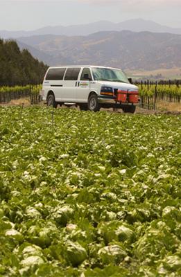 CalVans driving near leafy crops